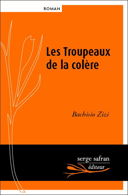 image from www.sergesafranediteur.fr